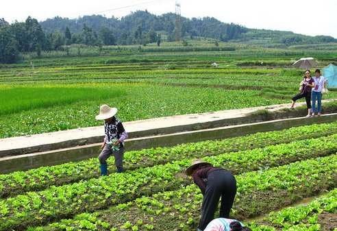 Sustainable Agriculture to End Hunger and Poverty