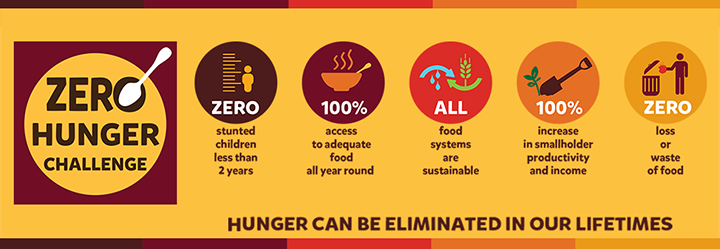 Timeline to Zero Hunger Challenge and Post- 2015