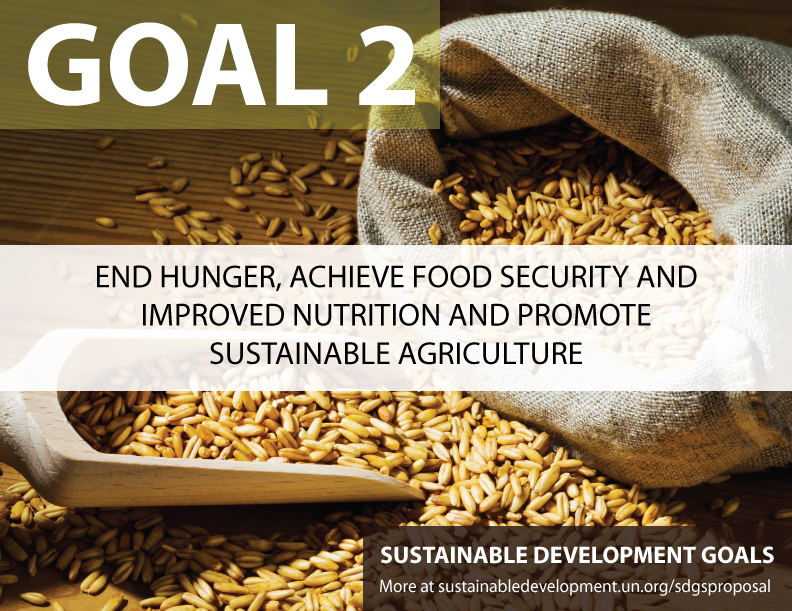 Benefits and Costs of the Food and  Nutrition Targets for the Post-2015 Development Agenda